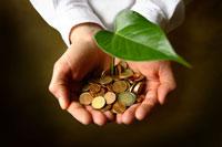 Hand mit Geld aus der eine Pflanze wächst